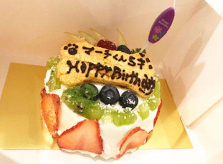 愛犬用 手作り誕生日ケーキのご予約承ります。