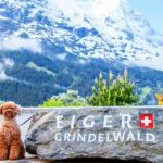 愛犬カルムと、ことしも、スイスに、勉強、視察、映像撮影、そして仕入れに来ております。