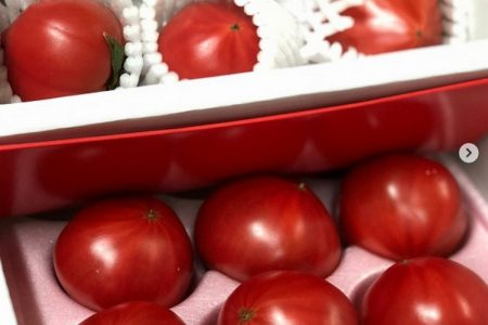 ブランドトマトが入荷