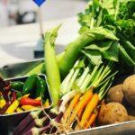 朝採れの三鷹野菜です。