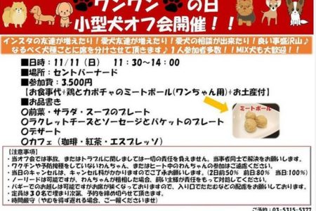 【完全予約制】11/11(日)は小型犬オフ会🐶イベントを開催いたします🍀