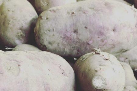 鹿児島県産の紫芋 入りました。