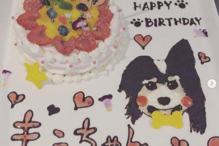 わんちゃんの誕生日パーティ